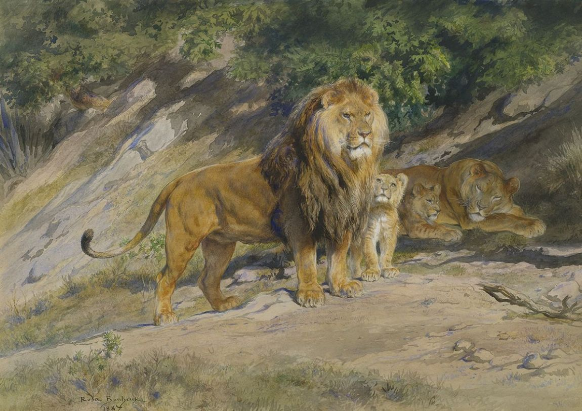Bonheur, Rosa: The King Watches. Lion Fine Art Print/Poster. Sizes: A4/A3/A2/A1 (001606)